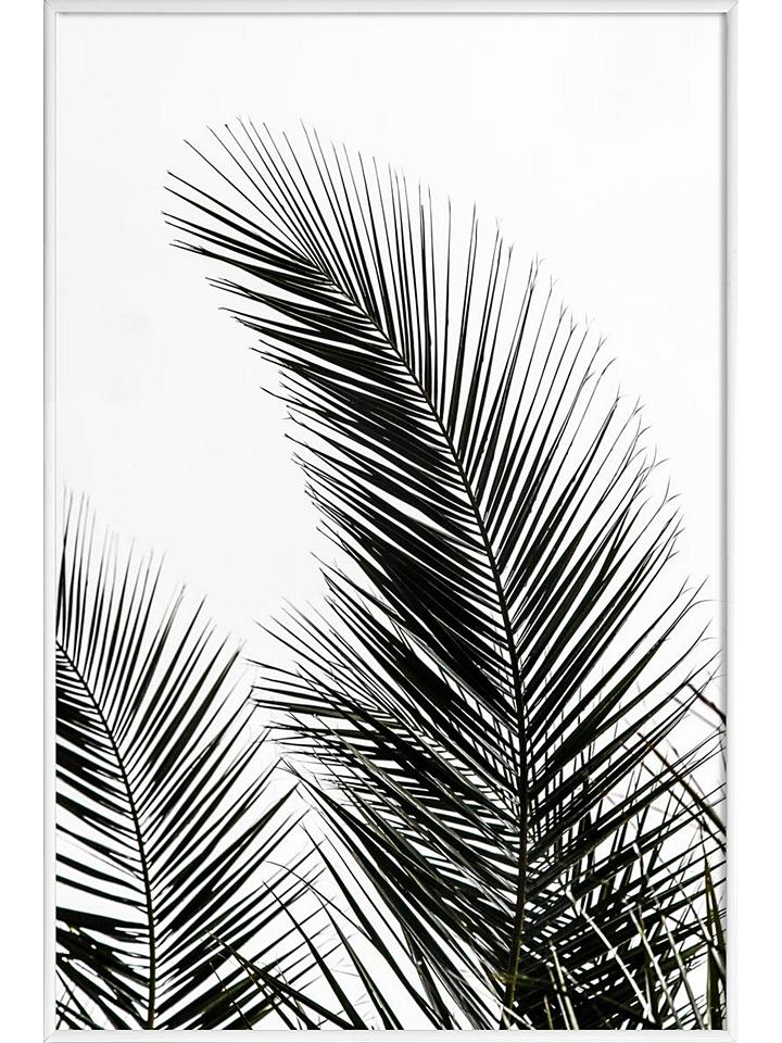 Juniqe Gerahmtes Poster ´´Palm Leaves 1´´ - (B)20 x (H)30 cm - 48% | Größe 30x45 | Wandbilder