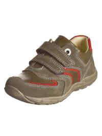 Primigi Leder-Sneakers in Khaki/ Rot