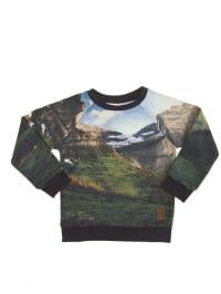 "LP BOYS Sweatshirt ""Randy"" in Bunt"